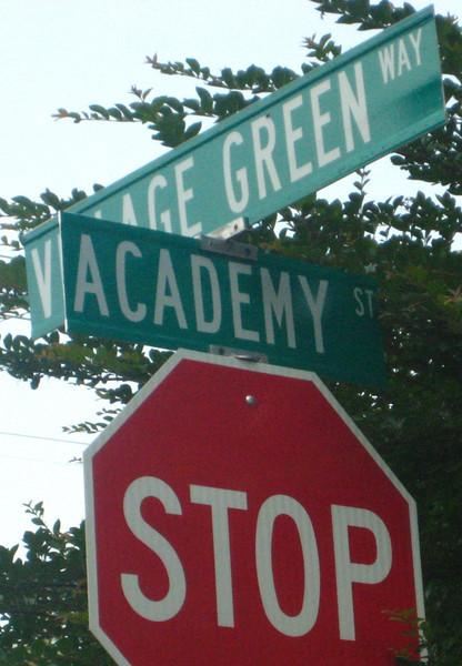 Village Green-Alpharetta Neighborhood (2).JPG