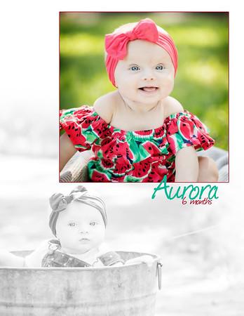 Aurora 6 Months