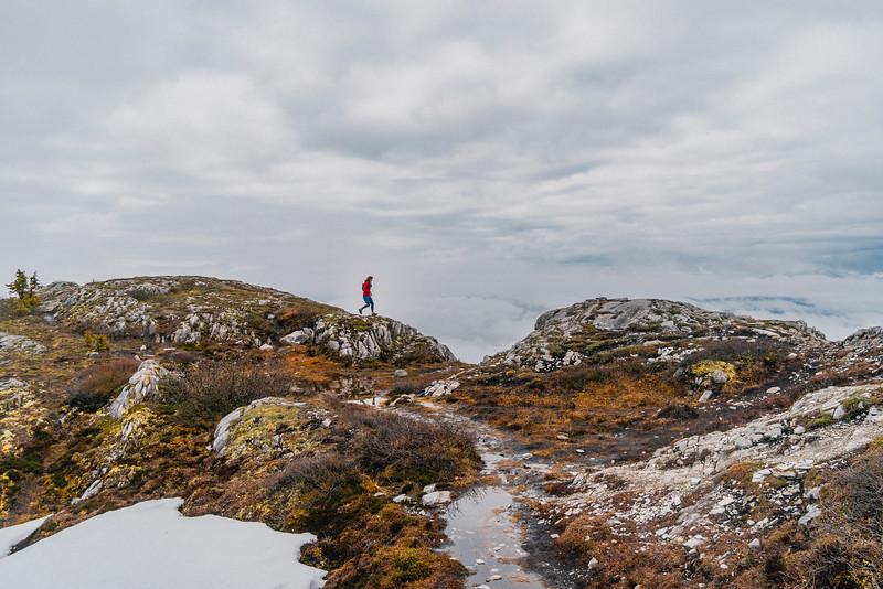 Trail Running Above White Horse, Yukon 2018