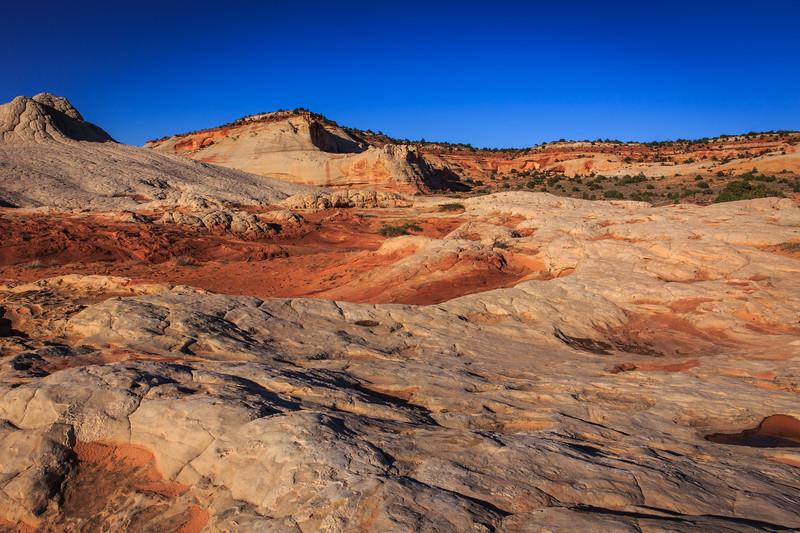 Utah-AZ ahoot-0939.jpg