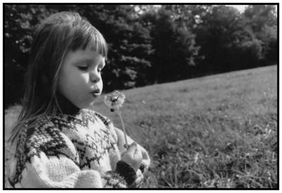 Billeder 1991