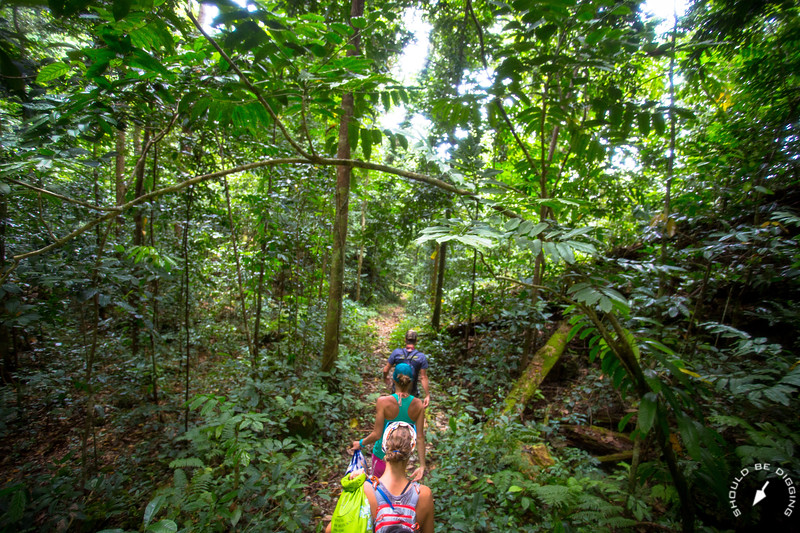 Hiking through the jungle on Ngeruktabel, Palau