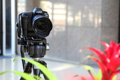 SIGMA 24-70mm f/2.8 IF EX DG HSM Lens Review 2011
