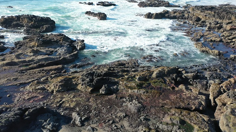 Ocean & Rocks along the State Park