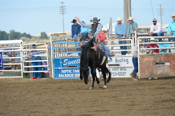 July 26 Rodeo