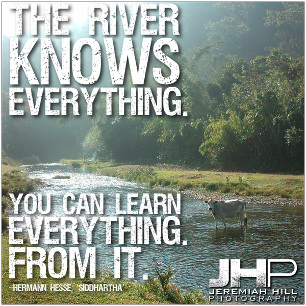 18-The River Knows Everything.png