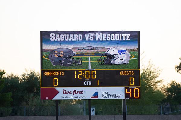 2019-11-01 Saguaro vs Mesquite
