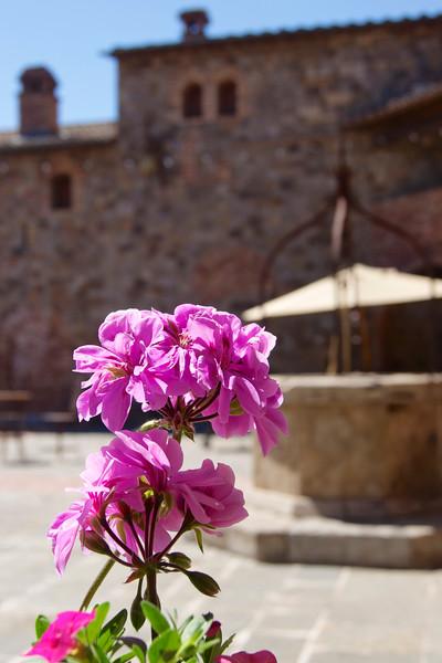 Castle courtyard flowers ref: 2c553247-1532-4b74-a191-dc4e88013c7e