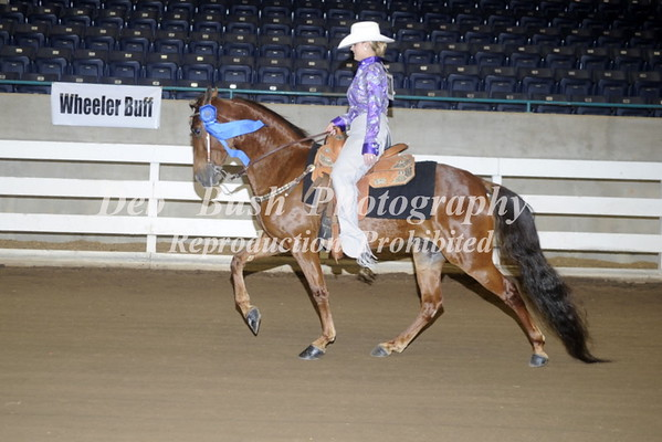 CLASS 3  TRAIL PLEASURE ADULT AMATEUR WESTERN