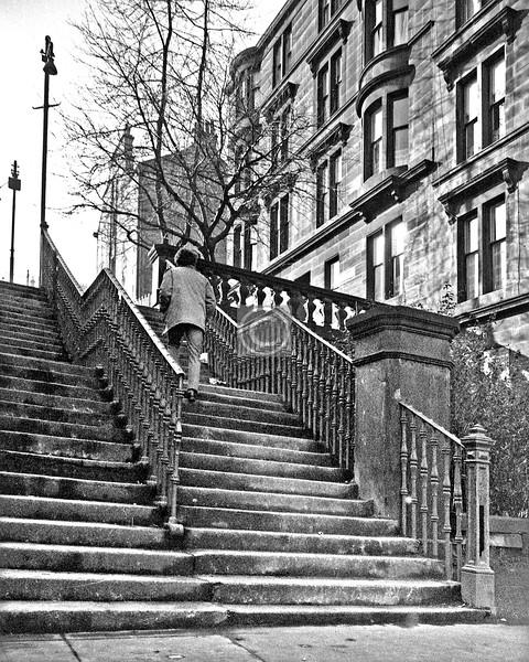 Dalhousie St upper steps.   February 1976