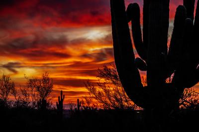 Scottsdale/Phoenix