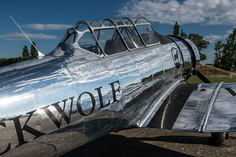 Private / North American T-6G Texan / F-AZCQ / Black Wolf Livery