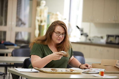 2018 UWL Ashley Nowak Archaeology Mussels