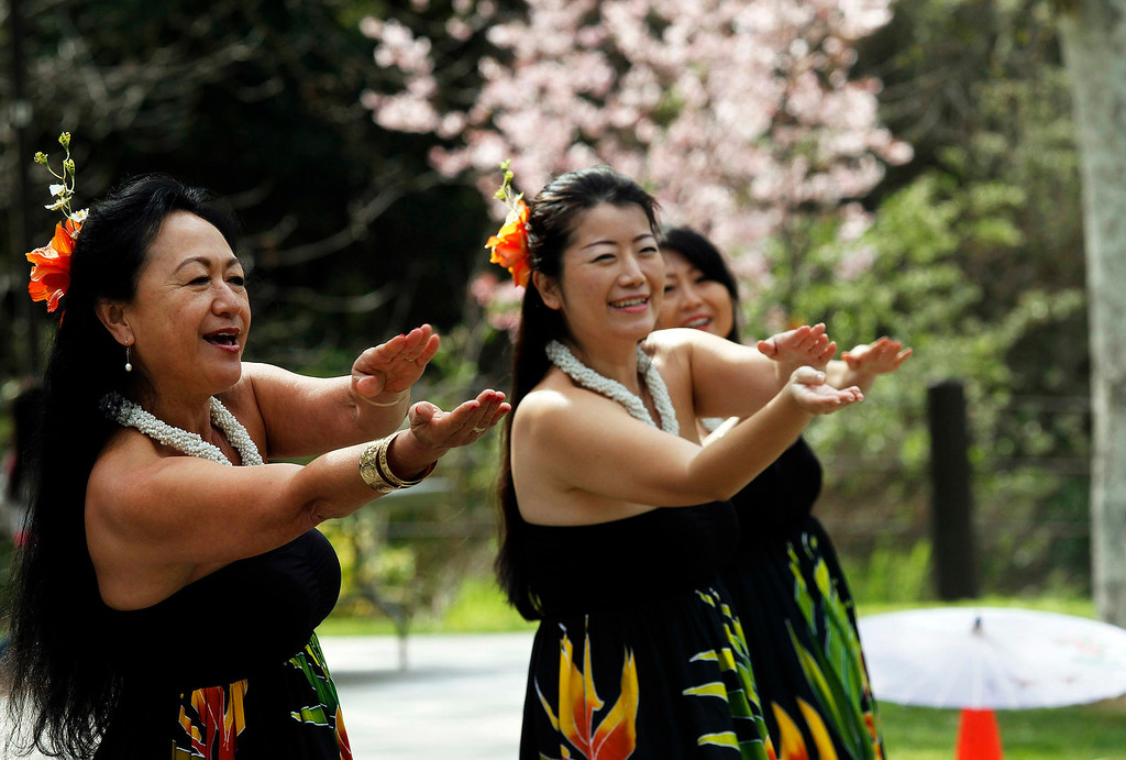 . Hawaiian Hula dancers, during the Cherry Blossom Festival, at Schabarum Park in Rowland Heights, Saturday, March 9, 2013. The Cherry Blossom Festival included Japanese and Korean drumming, Classical Chinese and Hawaiian Hula dancing, as well as Mexican and Dragon dancing. (Correspondent Photo by James Carbone/SVCITY)