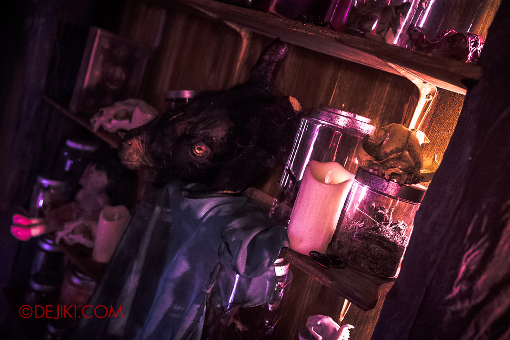 Halloween Horror Nights 7 Behind the Scenes: A Tour Inside HEX haunted house, scary collections