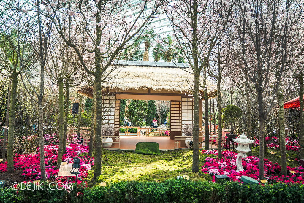 Gardens by the Bay - Sakura Matsuri 2018 floral display - flower field hut in the garden
