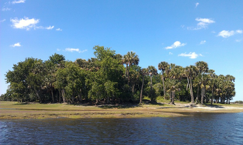 Paw Paw Island, a Native American mound used to escape floodwaters
