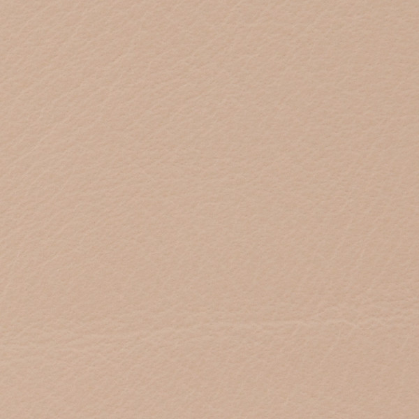 Leather-Standard-Blush.jpg