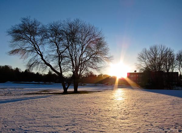 Winter chill... 2011