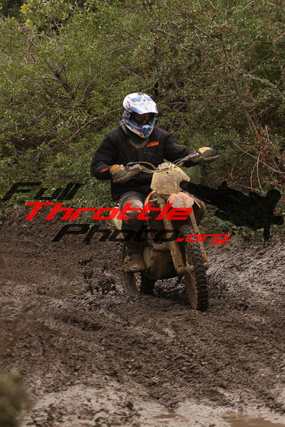 Rider 441