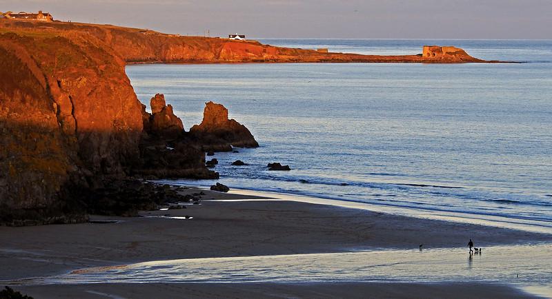 Lunan Bay and Boddin Point.  3.45pm, 10/11/13