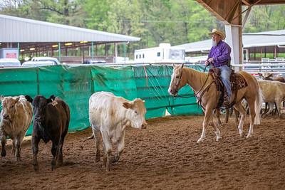 Volunteer Ranch Horse Association 4-10-21