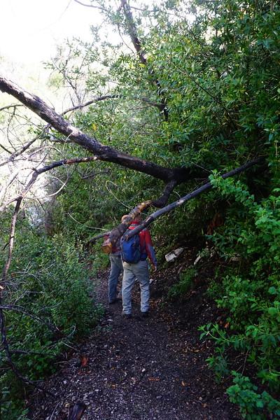 20160218043-Gabrielino Trail Scouting.JPG