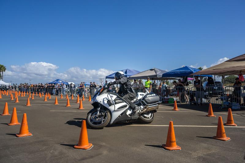 Rider 53-55.jpg