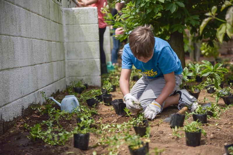 ICJC Garden Project-5348.jpg