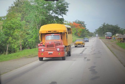 Commercial vehicles (buses and lorries)