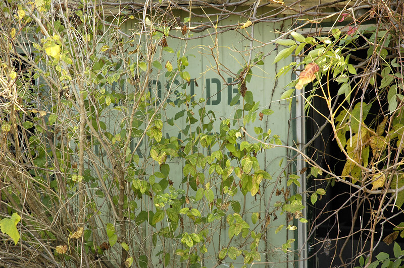 Hard to tell now, but the side of the building says 'Roadside Ceramics'.  Now overgrown and abandoned.