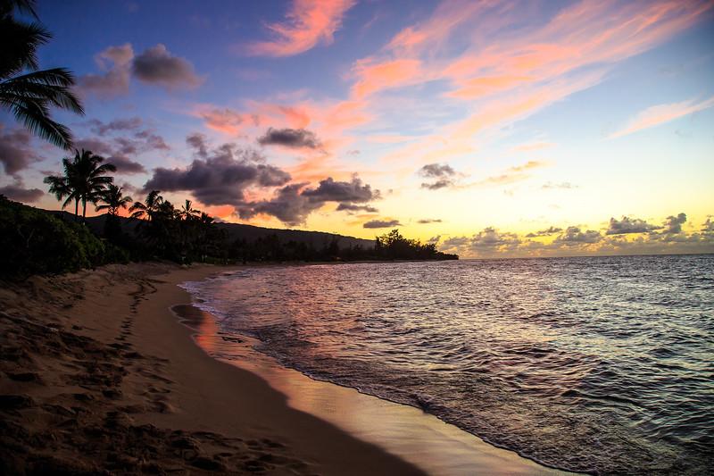 Hawaii-North Shore 2017-9445.jpg