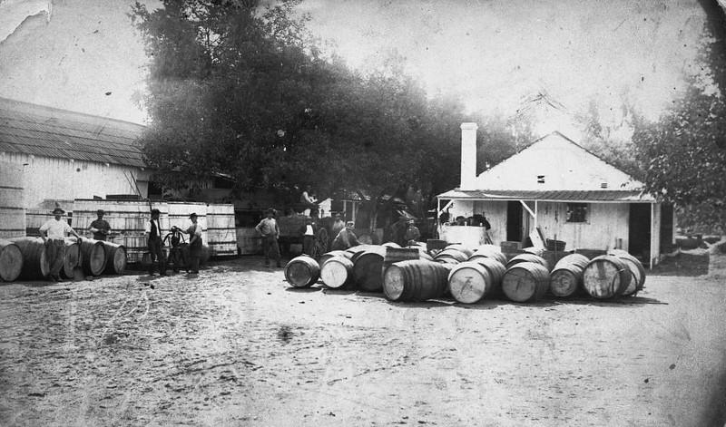 1884-Anaheim-DreyfusWinery.jpg