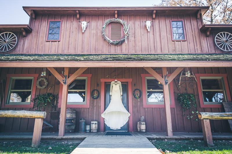 Rockford-il-Kilbuck-Creek-Wedding-PhotographerRockford-il-Kilbuck-Creek-Wedding-Photographer_G1A6715.jpg