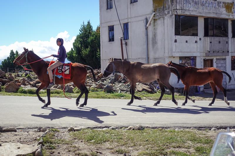 Ecuador-297.jpg