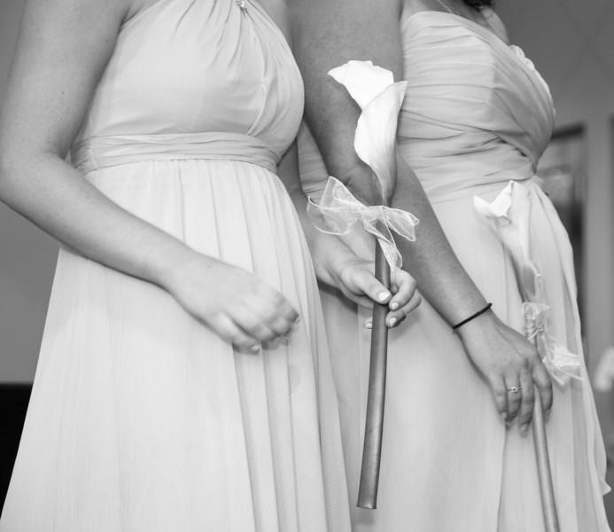 www.bellavitafotos.com, will and amanda,  wedding-8279.jpg