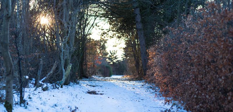 vintervejr2-35.jpg
