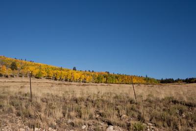Hiking Mt Sherman