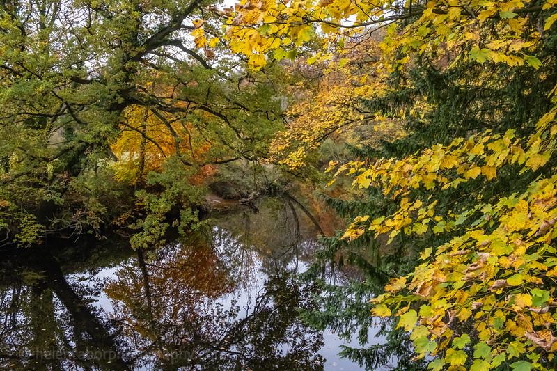 Knaresborough 3 Nov 18-6.jpg