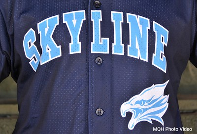 Skyline Baseball 2016