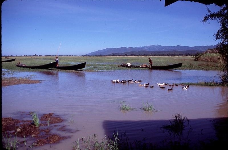 Myanmar1_117.jpg