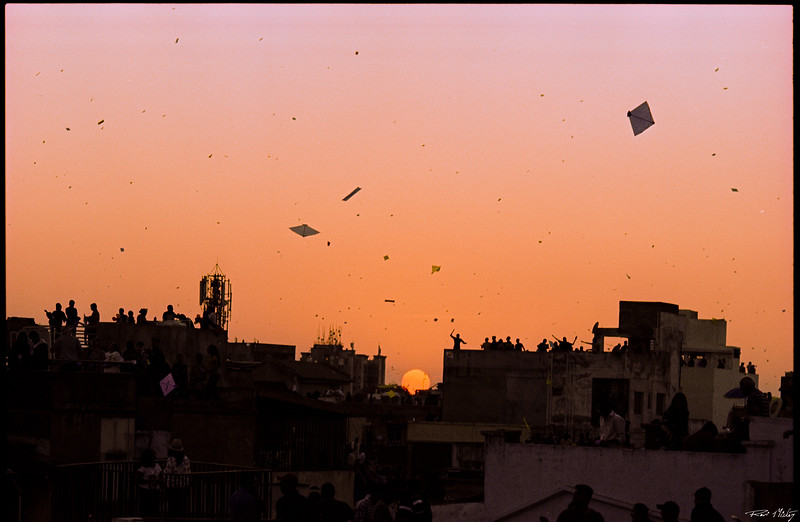 Uttarayan 2020 Ektachrome Cross 15.jpg