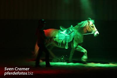 2007-01-13 - Showpferdeseminar
