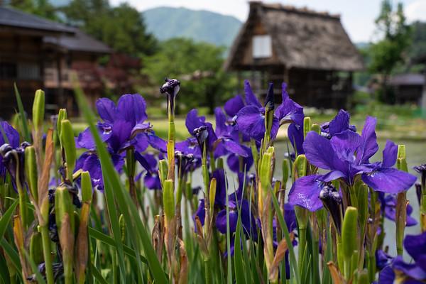 Shirakawa Japan