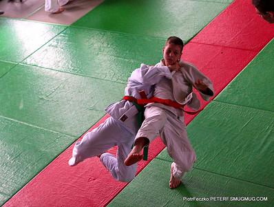 Judo 2014