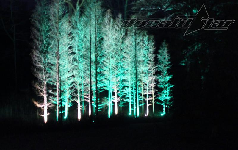 Longwood Gardens 2012-01-06 074.JPG