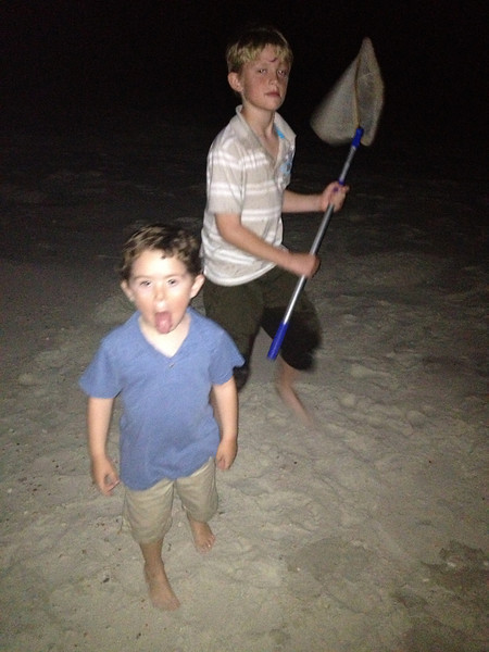 Crab Hunting!