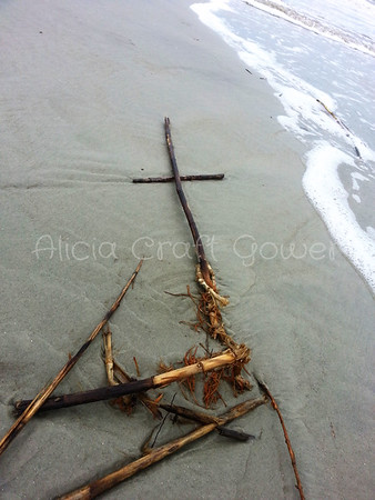 Crosses in Nature