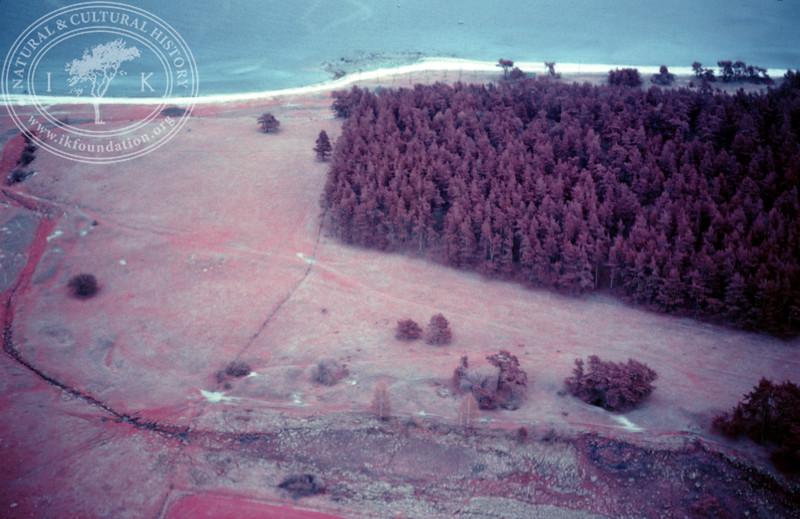 Haväng, Lindgrens backar/Tegelstensbackarna, ravin. Infrared photography (1986). | LH.0132