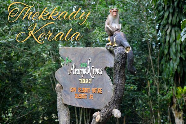 India, Kerala, Thekkady